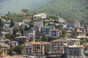 Italy, Genoa Province, Rapallo. Hillside with houses overlooking harbor by Alan Klehr