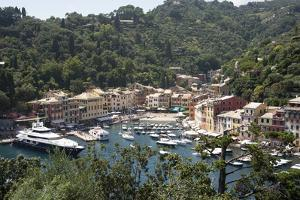 Italy, Province of Genoa, Portofino. Fishing village on the Ligurian Sea, overlooking harbor by Alan Klehr