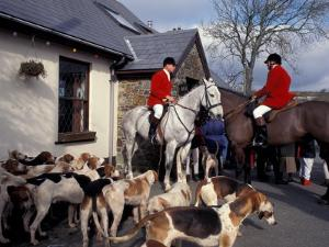Riders and Hounds Awaiting Fox Hunt, Wales, United Kingdom by Alan Klehr