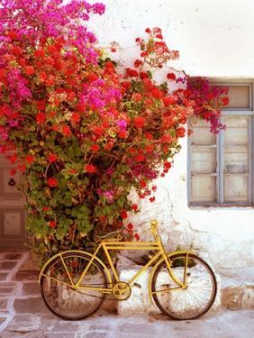 Paros, Greece by Alan Klug