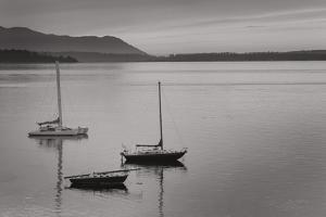 Bellingham Bay BW by Alan Majchrowicz