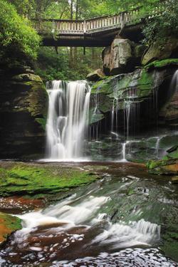 Elakala Falls West I by Alan Majchrowicz