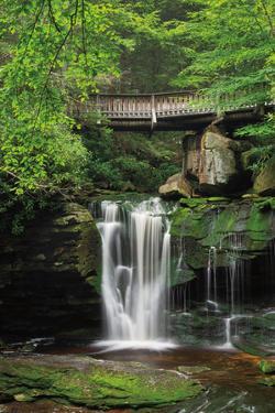 Elakala Falls West II by Alan Majchrowicz