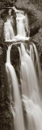 Kentucky Falls Panel by Alan Majchrowicz