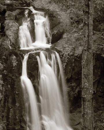 Kentucky Falls by Alan Majchrowicz
