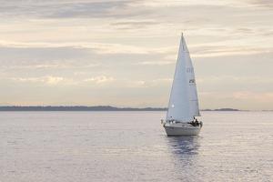 Sailboat in Semiahmoo Bay by Alan Majchrowicz