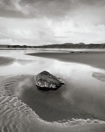 Shi Shi Beach by Alan Majchrowicz