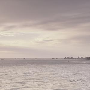 Shoreline Triptych Center by Alan Majchrowicz