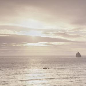 Shoreline Triptych Left by Alan Majchrowicz