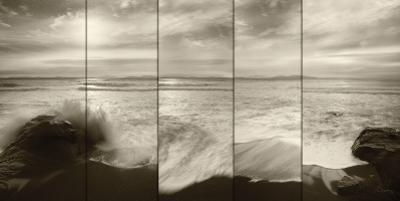 Tides and Waves by Alan Majchrowicz