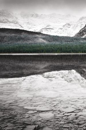 Waterfowl Lake Panel I BW with Color by Alan Majchrowicz