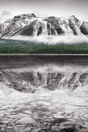 Waterfowl Lake Panel II BW with Color by Alan Majchrowicz