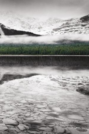 Waterfowl Lake Panel III BW with Color by Alan Majchrowicz
