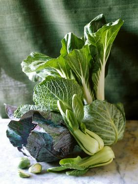 Still Life with Various Sorts of Cabbage by Alan Richardson