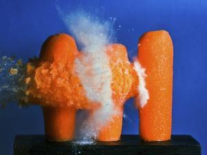 Carrot Catastrophe by Alan Sailer