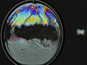 Colorful Bubble Gone by Alan Sailer