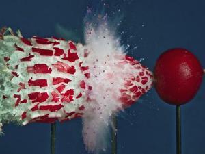 Tri Radish Destruction by Alan Sailer