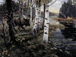 Camper's Paradise by Alan Sakhavarz