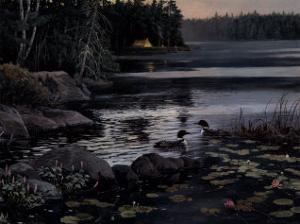 Northern Visitors by Alan Sakhavarz
