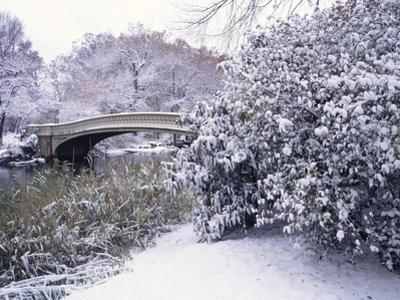 Snow at Bow Bridge in Central Park