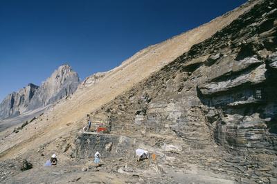 Burgess Shale Fossil Quarry
