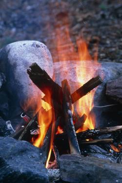 Campfire by Alan Sirulnikoff