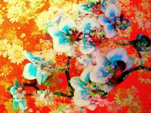 A Colorful Floral Montage by Alaya Gadeh
