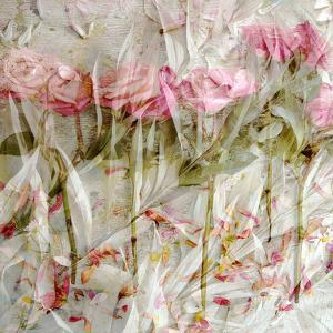 A Dreamy Floral Montage by Alaya Gadeh