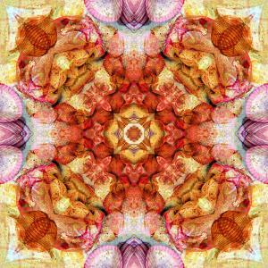 A Floral Mandala with Seahells by Alaya Gadeh
