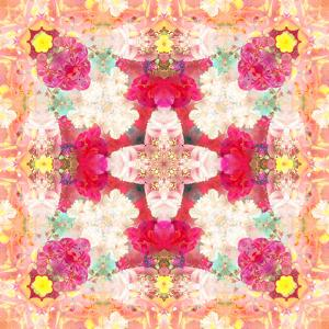 A Floral Montage, Layer Work from Pink and Red Poeny Blossoms and Pink Cherry Blossoms by Alaya Gadeh