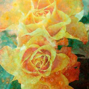 A Floral Montage of Yellow Roses and Ornamental Texture, Photograph, Layer Work by Alaya Gadeh