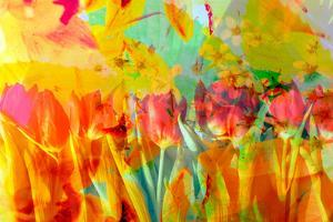 A Floral Montage, Photograph, Layer Work of Tulips and Other Flowers Multicolor by Alaya Gadeh