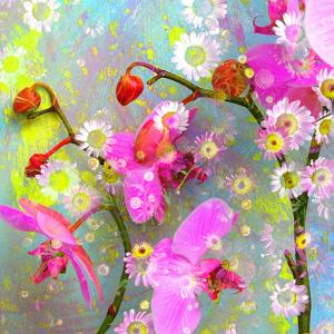 A Floral Montage with Pink Orchid and Daisy by Alaya Gadeh
