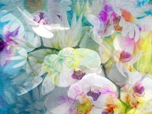 A Floral Montage with White Orchids and Multicolor Dahlia by Alaya Gadeh
