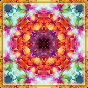 A Mandala from Flower Photographs by Alaya Gadeh