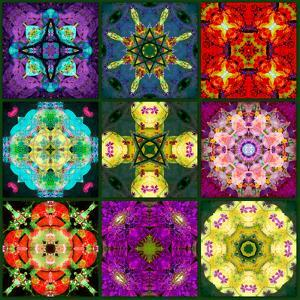 A Mandala from Flowers by Alaya Gadeh