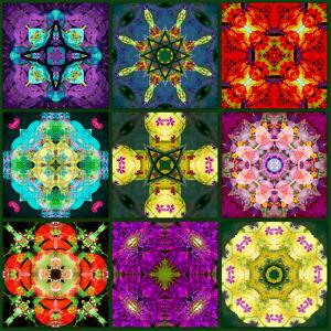 A Mandala from Flowers by Alaya Gadeh