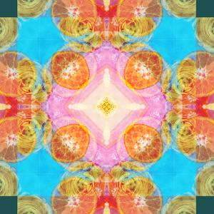 A Mandala Ornament from Flower Photographs by Alaya Gadeh