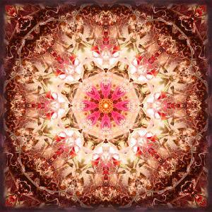 A Mandala Ornament from Flowers, Photography, Layer Artwork by Alaya Gadeh