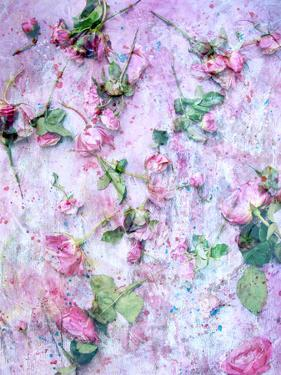 A Poetic Floral Montage from Pink Roses on Painted Texture by Alaya Gadeh
