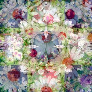 A Symmetric Floral Montage by Alaya Gadeh