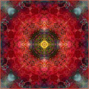An Energetic Symmetric Onament from Flower Photographs by Alaya Gadeh