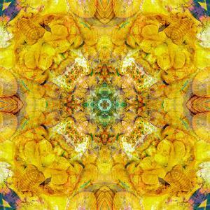 Colored Seworld Mandala by Alaya Gadeh