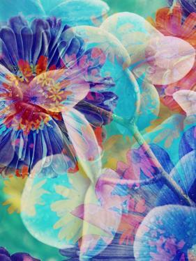 Colorful Translucent Layer Work from Orchid and Zinnia by Alaya Gadeh