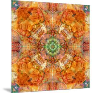 Colseaworld Mandala, no. 1 by Alaya Gadeh