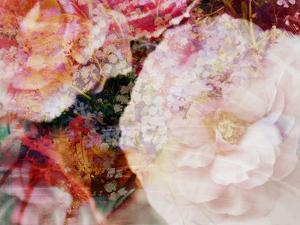 Composing, Blossoms in Bright Rose, Roses Layered with Other Flowers by Alaya Gadeh