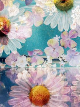 Composing of Blossoms and Water by Alaya Gadeh