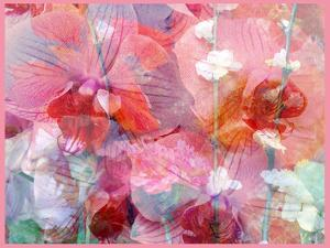 Composing of Orchids and Flowering Branches by Alaya Gadeh