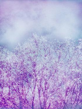 Composing, Trees, Layered with Texture and Paint in Violet and Blue by Alaya Gadeh