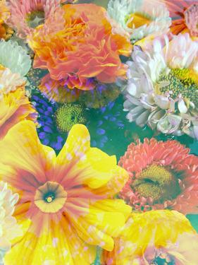 Different Summer Blossoms in Green Water in Yellow Orange White and Pink Tones by Alaya Gadeh